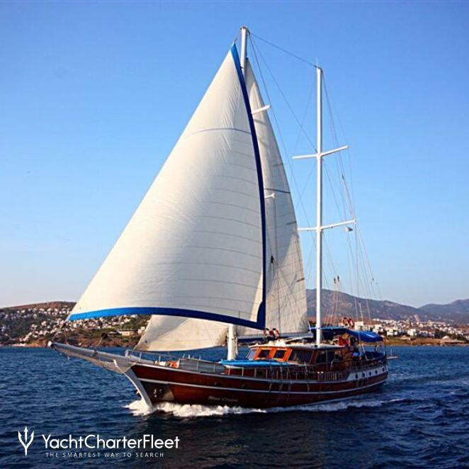 Blue Cruise photo 2