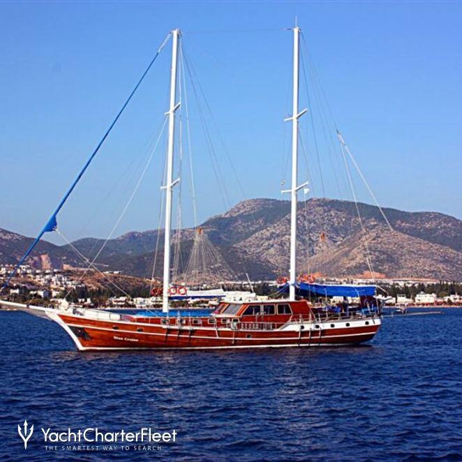Blue Cruise photo 3
