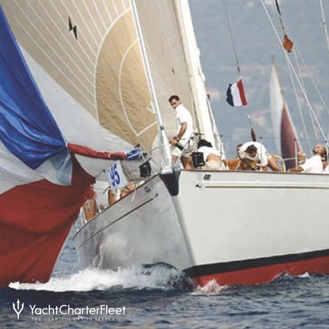 Whitefin photo 18