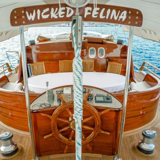 Wicked Felina photo 15