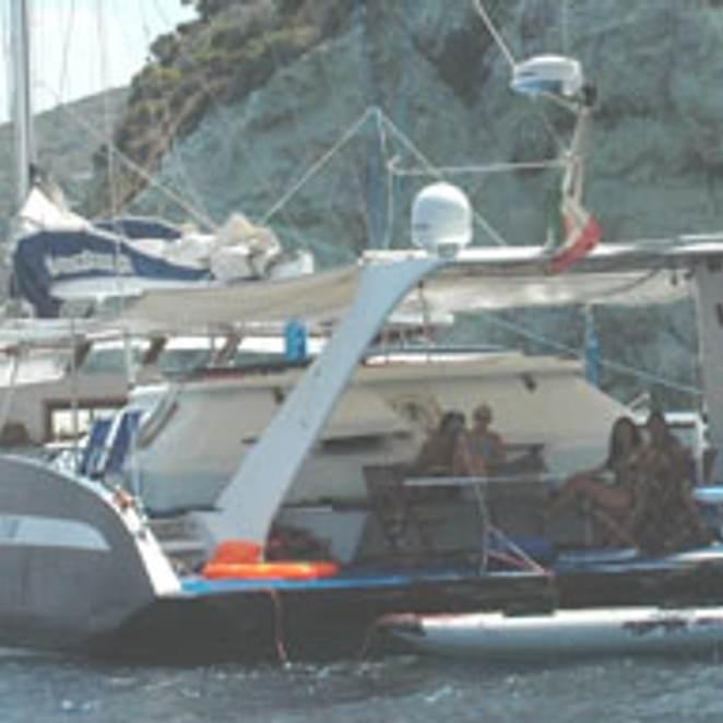 Albatros photo 2