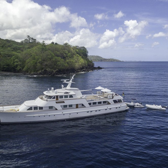 Calypso photo 49