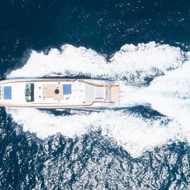 Blue Jay photo 39