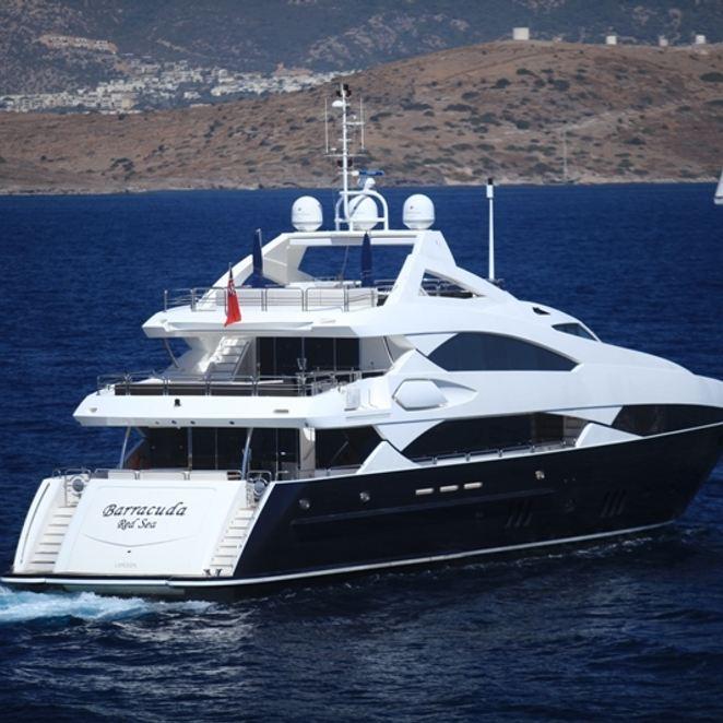 Barracuda Red Sea photo 5