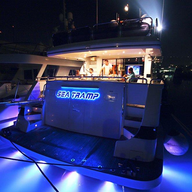 Sea Tramp photo 16