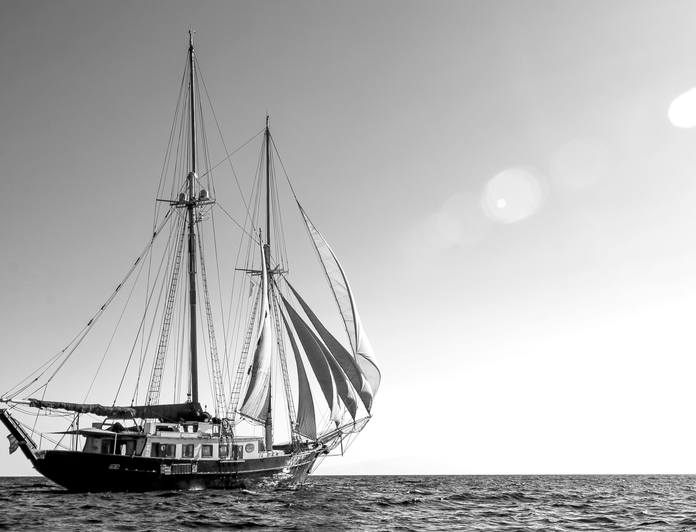 Arktos photo 37