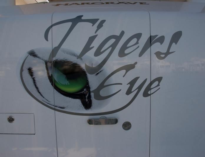 Tigers Eye photo 30