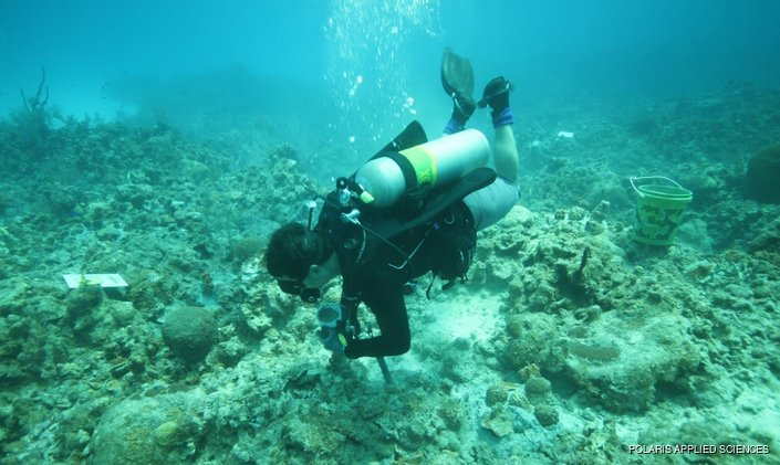 Restoration Work Completed On Damaged Coral Reef