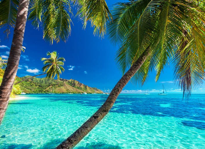 Find your perfect island on a Tahiti yacht charter