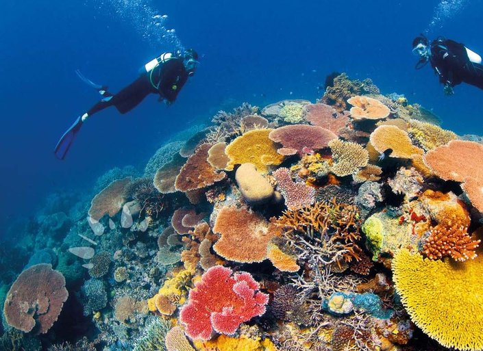 Why You Have To Book A Great Barrier Reef Yacht Charter Right Away