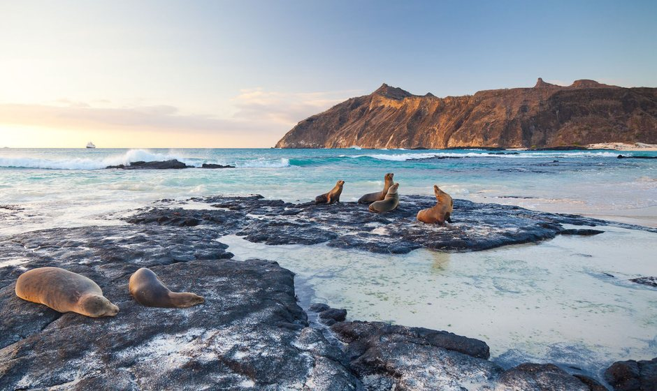10 Top Galapagos Islands