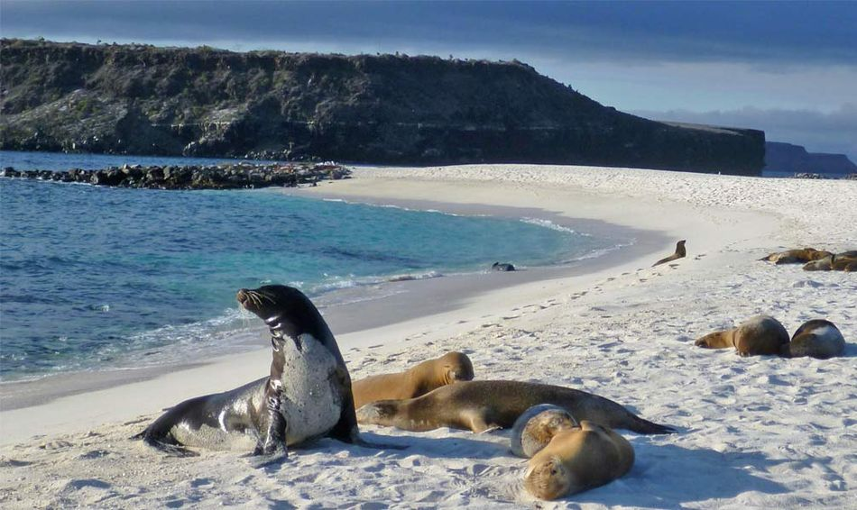 10 Top Galapagos Islands Image 1