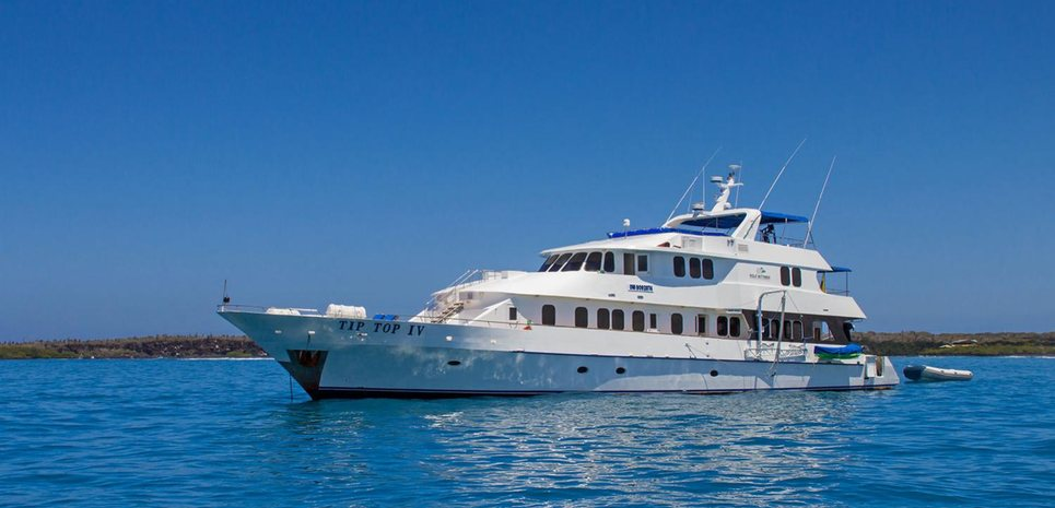 Tip Top IV Charter Yacht