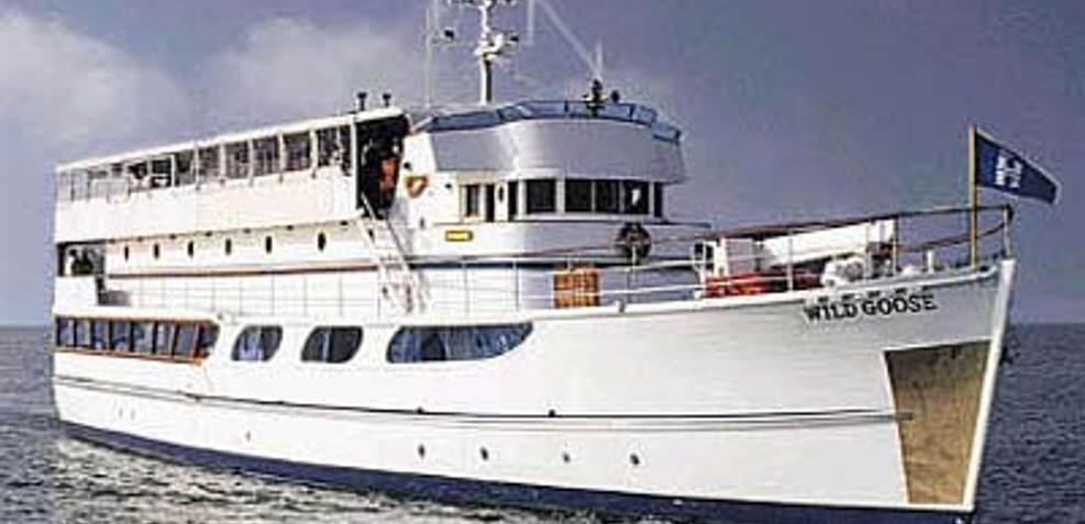 Wild Goose Charter Yacht