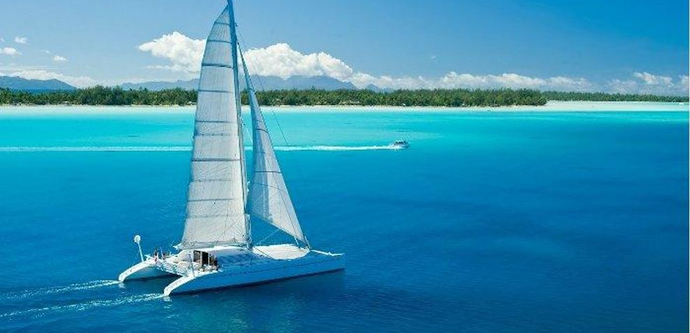 Magic Cat Charter Yacht