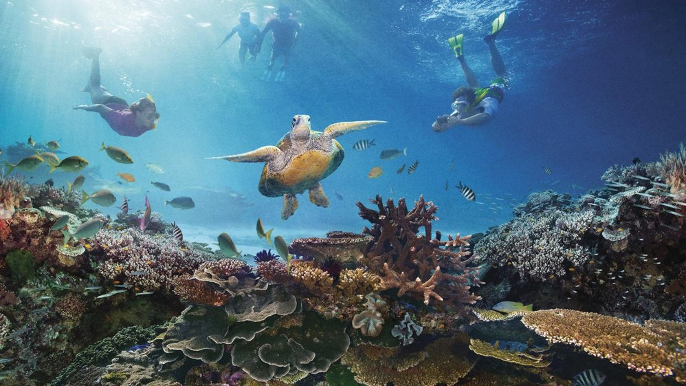 10 Top Islands in the Great Barrier Reef